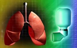 Pulmões e inalador usados por pacientes da asma Fotografia de Stock Royalty Free