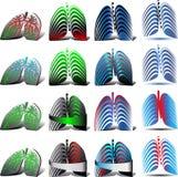 Pulmonary Diagnostics Stock Images