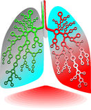 Pulmonary diagnostics. Web icons to create Web sites Stock Photography