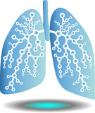 Pulmonary diagnostics Royalty Free Stock Photo