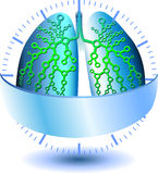 Pulmonary Diagnostics Royalty Free Stock Images