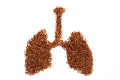 Pulmonary form consists of snuff Royalty Free Stock Images
