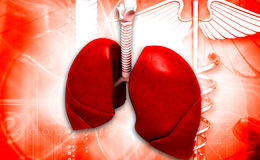 Pulmones stock de ilustración