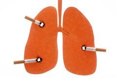 Pulmones dañados por los cigarrillos Imagen de archivo