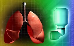 Pulmones e inhalador usados por los pacientes del asma Fotografía de archivo libre de regalías