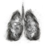 Pulmones hechos de la explosión del polvo negro aislada en blanco Fotos de archivo libres de regalías