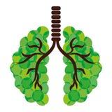 Pulmones verdes de la imagen del icono de las ramas Imágenes de archivo libres de regalías