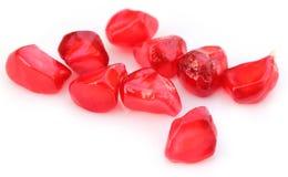 Pulp of pomegranate Royalty Free Stock Photos