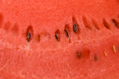 Pulp of watermelon Stock Photos