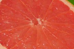 Pulpa anaranjada roja Imagenes de archivo