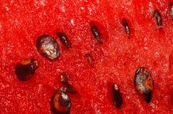 Pulpa de la sandía con el primer de las semillas Foto de archivo