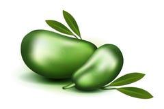 Pulpe et graines réalistes du vecteur 3d de photo avec des feuilles d'isolement sur le triloba blanc d'asimina de fruit de papaye Illustration Libre de Droits