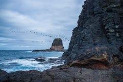 Pulpit rock at Cape Schanck, Australia Stock Image