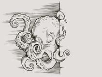 Pulpo Imagen de archivo libre de regalías
