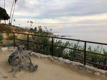 Pulpo del Laguna Beach fotos de archivo libres de regalías