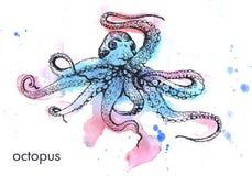 Pulpo marino grande dibujado mano imagen de archivo libre de regalías