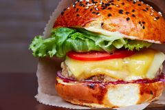 Cheeseburger with lattice. Pulpy cheeseburger with lattice and tomato - studio photo Royalty Free Stock Image