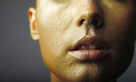 Pulpy golden lips Stock Image