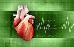 Pulsação do coração Fotografia de Stock