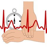 Pulse ekg. Illustration for medical Royalty Free Stock Image