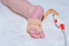 Pulse oximeter sensor on the foot of newborn baby at children`s hospital royalty free stock photos