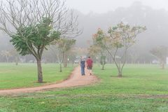 Pulser de personnes, s'exerçant au parc urbain dans le matin brumeux de chute Images libres de droits