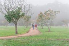 Pulser de personnes, s'exerçant au parc urbain dans le matin brumeux de chute Photos stock