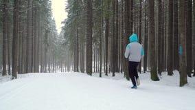 Pulser en parc d'hiver clips vidéos