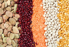 Pulses Royalty Free Stock Photography