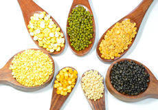 Pulses and lentils royalty free stock photos