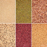 Pulses Selection Royalty Free Stock Image