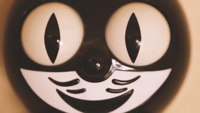 Pulso de disparo do gato do brinquedo com olhos moventes vídeos de arquivo