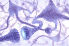 Pulso de la célula nerviosa Imagen de archivo libre de regalías
