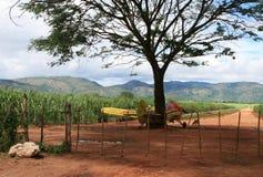 Pulvérisateur de pesticide Images libres de droits
