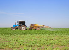 Pulvérisation de soja photo libre de droits