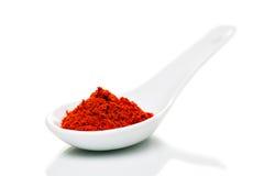 Pulver för paprika (paprika) på porslinskedar Arkivbild