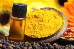 Pulver för senapsgult olja och gurkmeja royaltyfri bild