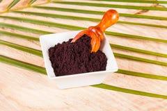 Pulver gibt acai brasilianisches Fruchteuterpe oleracea Lizenzfreie Stockbilder