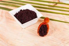 Pulver gibt acai brasilianisches Fruchteuterpe oleracea Stockfoto