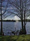 Pulverizador da fonte no meio do lago fotos de stock