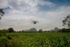 Pulverizador do zangão da agricultura para a exploração agrícola esperta Fotos de Stock Royalty Free