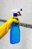 Pulverizador para limpar à disposição Fotos de Stock Royalty Free