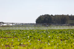 Pulverizador químico agrícola Imagem de Stock