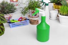 Pulverizer para pulverizar plantas domésticas Imagens de Stock