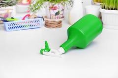 Pulverizer para pulverizar plantas domésticas Imagem de Stock Royalty Free