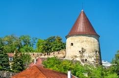 Pulverturm,一个古老塔在多瑙河畔克雷姆斯,奥地利 免版税图库摄影