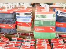 Puma boxers Royalty Free Stock Image
