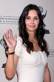 Puma, Courteney Cox foto de stock