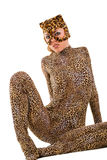 Puma cub Stock Images