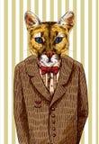 Puma dans une veste illustration libre de droits